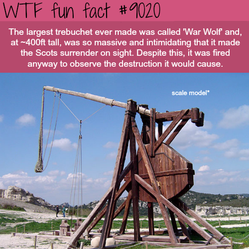 The largest trebuchet ever made - WTF fun facts