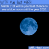 the last day to see a blue moon until 2020 wtf