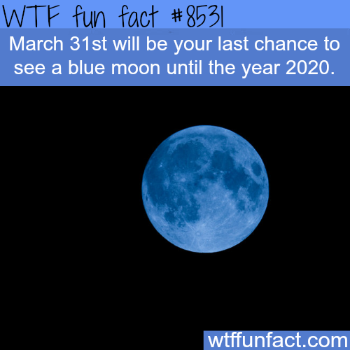 The last day to see a blue moon until 2020 - WTF fun facts