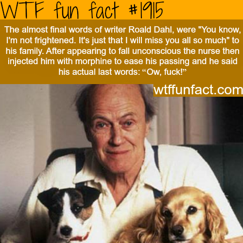 The last words of Roald Dahl-WTF fun facts