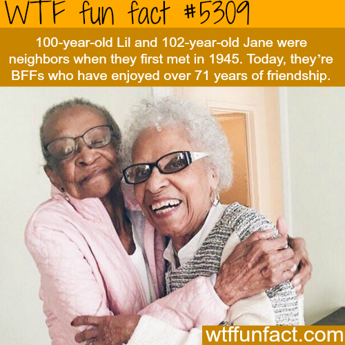 The longest friendship? - WTF fun facts