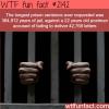 the longest prison sentence