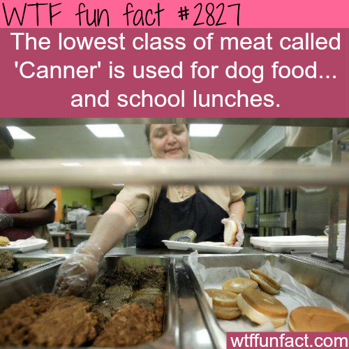 The lowest class of meat… just disgusting -  WTF fun facts