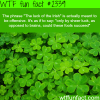 the luck of the irish meaning