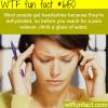 the main reason why you get headache wtf fun