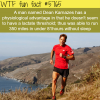 the man who can run forever dean karnazes wtf