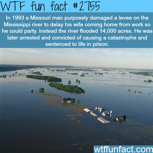 The man who hated his wife the most -WTF fun facts