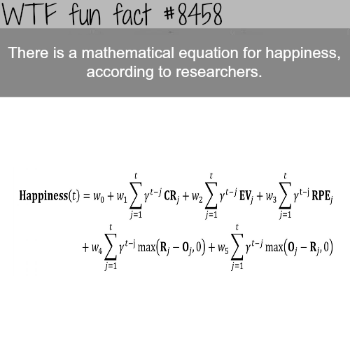 The mathematical equation for happiness - WTF fun facts