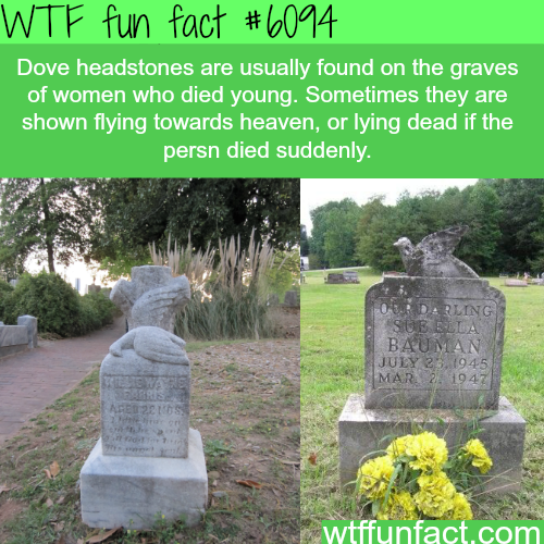 The meaning behind gravestones symbols - WTF fun facts