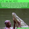 the most amazing story about a man a crocodile