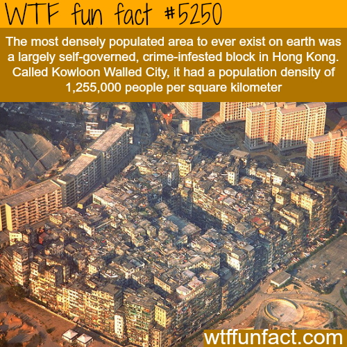 The most densely populated area - WTF fun facts