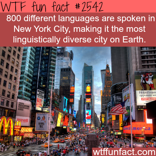 The most diverse city in the world -WTF funfacts