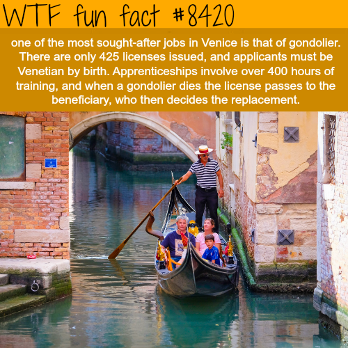 The most sought-after job in Venice - WTF fun facts