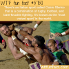 the most violent sport in the world wtf fun