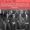 the new york mafia rules wtf fun facts