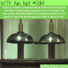 the oldest running battery wtf fun facts