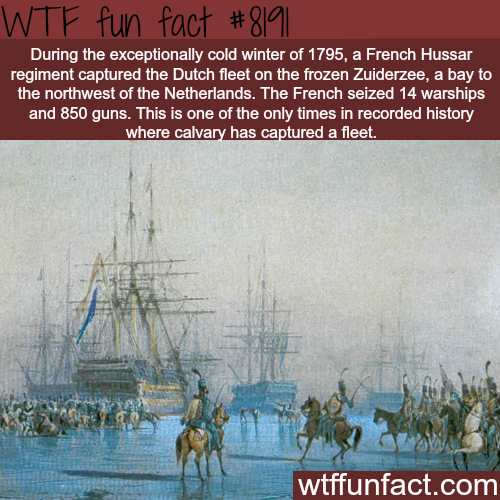 The only time cavalry captured a fleet - WTF fun fact