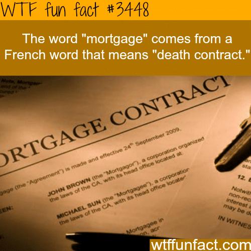 "The origin of the world ""Mortgage"" - WTF fun facts"