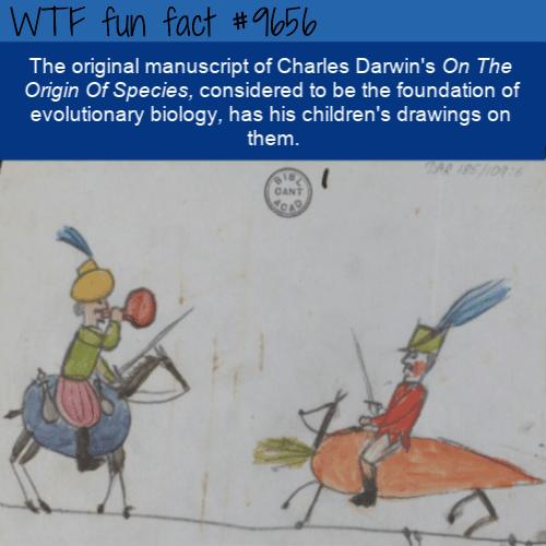 The original manuscript of Charles Darwin's On The Origin Of Species