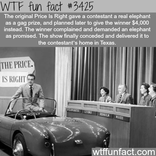 The original price is right - WTF fun facts