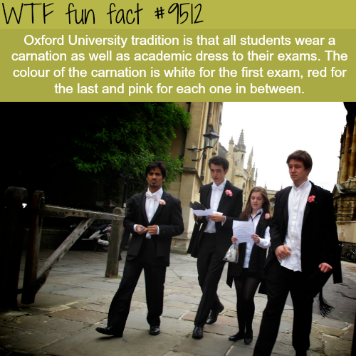 The Oxford University Tradition - WTF fun fact