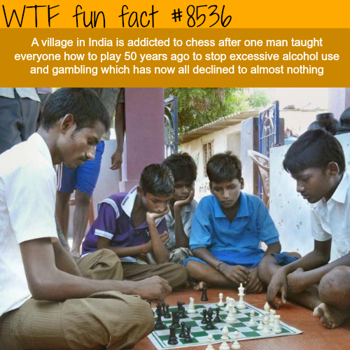 The people of this Indian village are addicted to chess - WTF fun facts