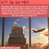 the perfect length vacation wtf fun facts