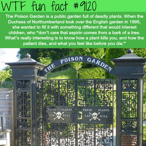 The PoisonGarden - WTF fun fact