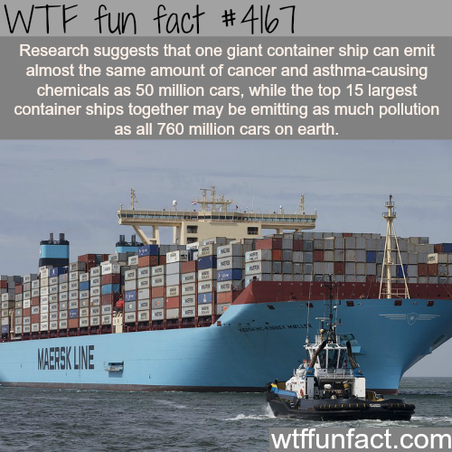 The pollution and chemicals caused by container ships -  WTF fun facts