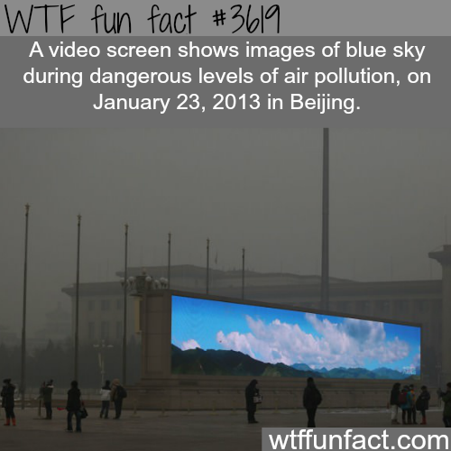 The pollution in Beijing