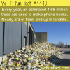 the problem with phone books wtf fun facts