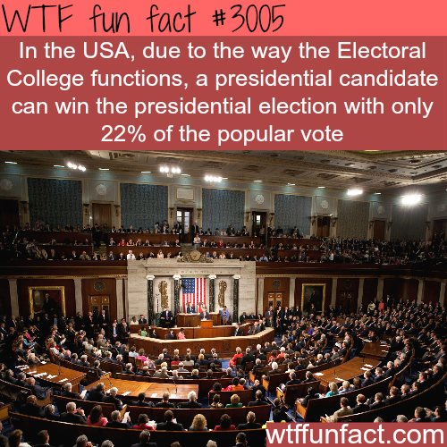 The problem with the U.S. elections -  WTF fun facts