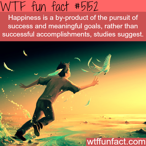 The pursuit of happiness - WTF fun facts