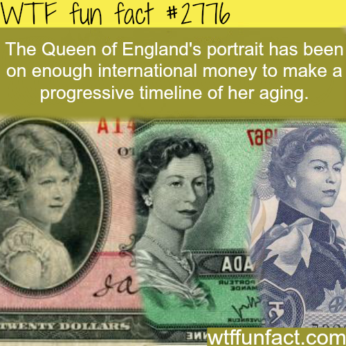 The queen of England portrait on money - WTF fun facts