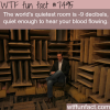 the quietest room in the world wtf fun facts
