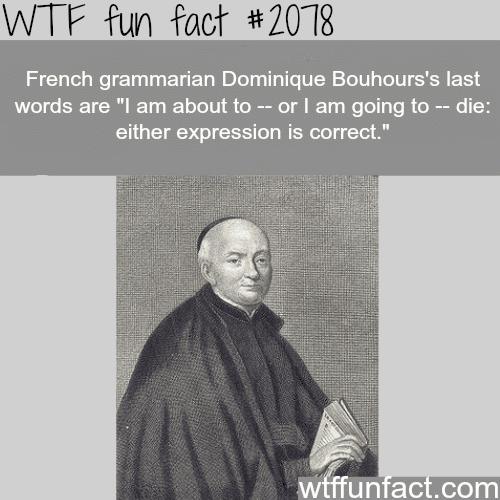 The Real Grammar Nazi -WTF fun facts
