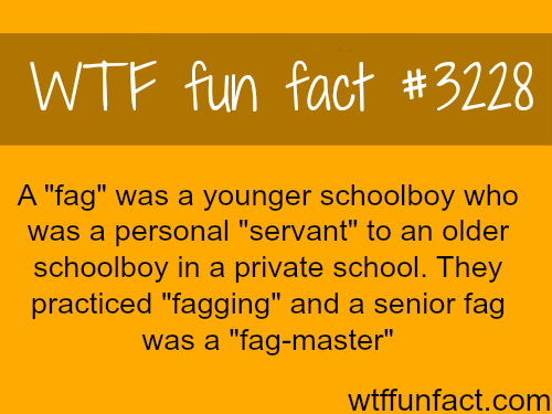 "The real origin for the word ""fag"" and ""fag master"" -  WTF fun facts"