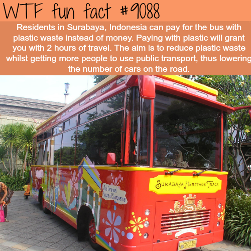 The residents of Indonesia can pay for the bus using plastic waste - WTF fun fact