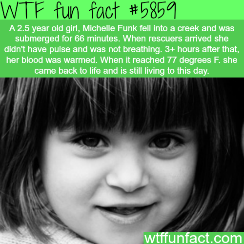 The revival of a 2 year old after an hour of drowning - WTF fun facts