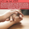 the right thing to say wtf fun facts
