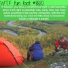 the right to roam wtf fun facts