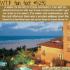 the ritz carlton in dubai wtf fun facts