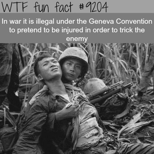 The Rules of War - WTF Fun Fact