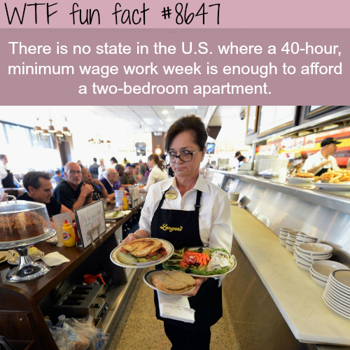 The sad facts about minimum wage - WTF fun facts