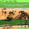 the sahara is only in a dry period