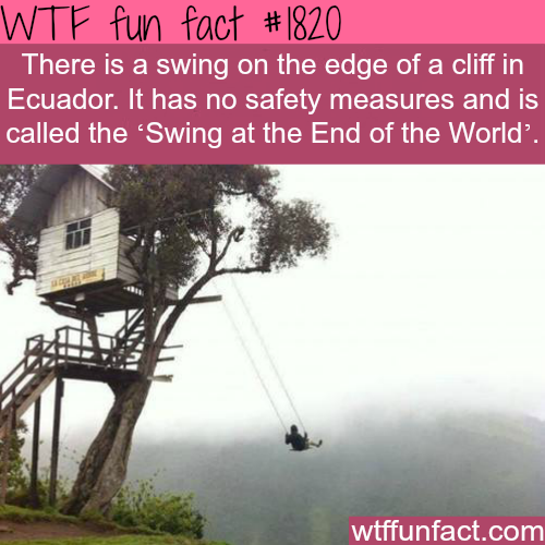 The scariest swing? - WTF fun facts