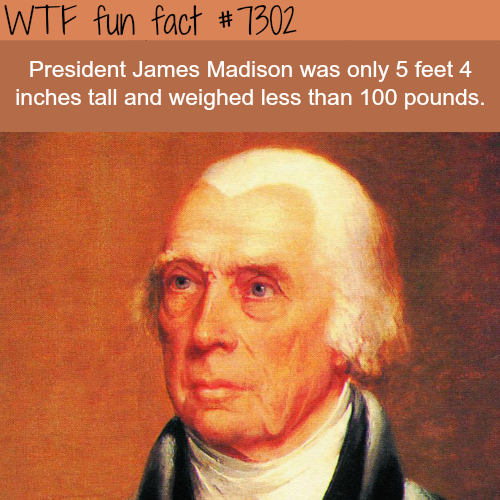 The shortest U.S. president in history - WTF fun fact
