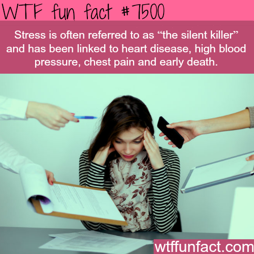 The silent killer - WTF FUN FACTS