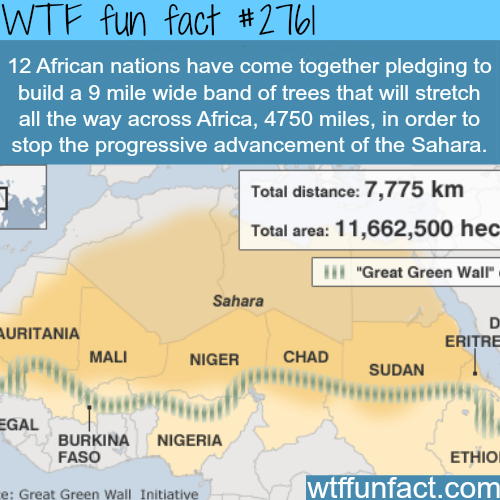 The solution to stop the Sahara desert-WTF fun facts
