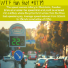 the speed cameras lottery wtf fun facts